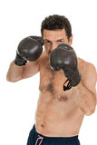 Adult smiling man boxing sport gloves boxer isolated Royalty Free Stock Photos
