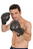 Adult smiling man boxing sport gloves boxer isolated Stock Photography
