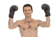 Adult smiling man boxing sport gloves boxer isolated Royalty Free Stock Photography