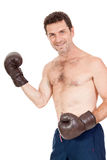 Adult smiling man boxing sport gloves boxer isolated Royalty Free Stock Image