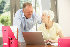 Adult Son And Senior Mother At Home. Adult Son And Senior Mother Using Laptop At Home Royalty Free Stock Photo