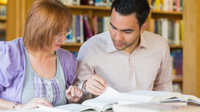 Adult students studying together in the library Royalty Free Stock Image