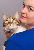 Adult tabby Stock Photos