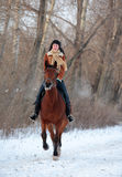 Adult woman galloping horseback on winter road Stock Image