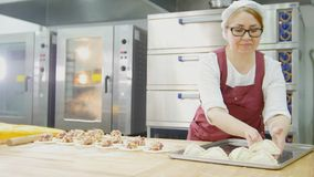 Adult woman in glasses and apron bakes cakes in the bakery face stock image