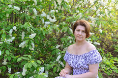 Adult woman near blossoming bird cherry in the park Stock Photos