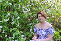 Adult woman near blossoming bird cherry in the park Stock Photo