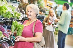Adult woman shopping vegetables Royalty Free Stock Image