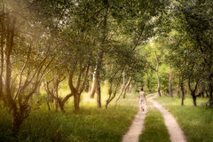 Adult woman is walking in the forest Stock Photography