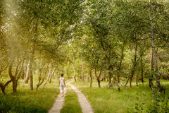 Adult woman is walking in the forest Royalty Free Stock Photography