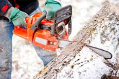 Adult worker cutting trees with chainsaw Royalty Free Stock Photos