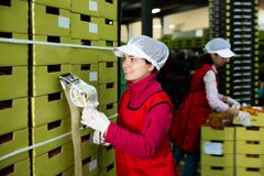 Free Adult Workwoman Sticking Labels On Carton Boxes Stock Image - 202971991