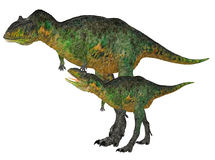Adult and Young Aucasaurus Stock Photo