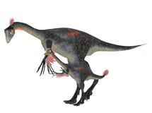 Adult and Young Gigantoraptor stock illustration