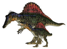 Adult and Young Spinosaurus vector illustration