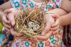 Adulte et enfant tenant le nid dans des bras Image stock