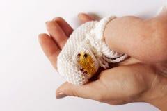 Adulto de la mano y pie del bebé Fotos de archivo libres de regalías