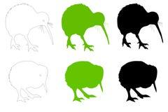 Adulto del pájaro del kiwi y ilustración del vector del bebé Fotos de archivo