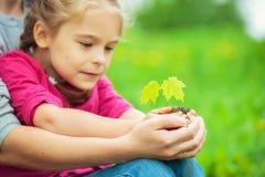 Adulto e bambino che tengono poca pianta verde in mani immagini stock