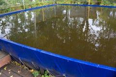 Adulto exterior do PVC do verão acima da piscina do quadro da terra com o revestimento de madeira da plataforma do pátio Fotografia de Stock Royalty Free