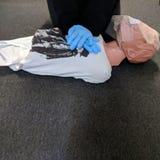Adulto Manoj do treinamento do CPR imagem de stock