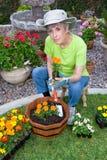 Adulto que planta las flores Fotos de archivo