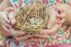 Adulto y niño que sostienen la jerarquía con los huevos Imagenes de archivo
