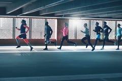 Adultos do atletismo no treinamento do sportswear imagem de stock royalty free