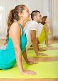 Adultos en la práctica de la yoga del grupo Imagen de archivo libre de regalías