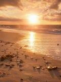 Adultos jovenes Playa con las piedras y los rastros del agua Reflexión de Sun en el mar liso Fotografía de archivo libre de regalías