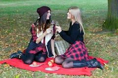 Adultos jovenes que tienen comida campestre en parque entre las hojas de otoño Imagen de archivo