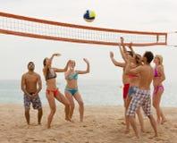 Adultos que lanzan la bola sobre red y la risa Imagen de archivo