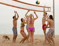 Adultos que lanzan la bola sobre red y la risa Imagenes de archivo