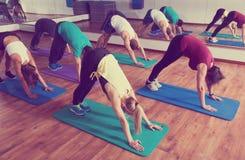 Adultos que tienen clase de la yoga en club de deporte Fotos de archivo libres de regalías