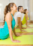 Adults at group yoga practice Royalty Free Stock Image