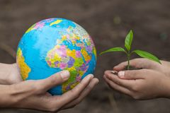 Adults holding a globe and child hand holding a small seedling, plant a tree, reduce global warming, World Environment Day.  stock photo