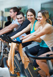 Adults riding stationary bicycles Royalty Free Stock Image
