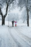 Adults with umbrellas walking during a snowfall day stock images