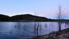 Λίμνη Advancetown στο Gold Coast Queensland Αυστραλία Στοκ Εικόνες