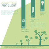 Advantages of phyto light. Vector infographic elements LED lamp with statistics Stock Image