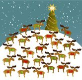 Advent calendar Stock Images
