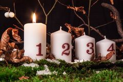 Advent candles. Lit on a natural background and moss Royalty Free Stock Image