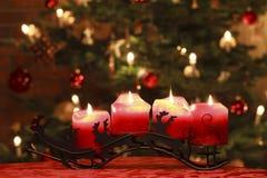 Advent Candles na frente da árvore de Natal Fotos de Stock Royalty Free