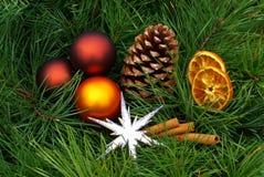 Free Advent Wreath 08 Stock Image - 3550931
