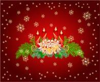 Advent wreath with white poinsettia vector Stock Photo