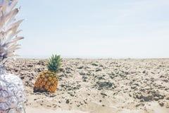 Adventure, Arid, Art, Beach Stock Image