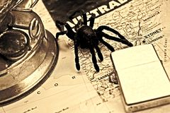 Adventure australia. Travel background from a big spider on a Australian map with old lamp and zippo royalty free stock images