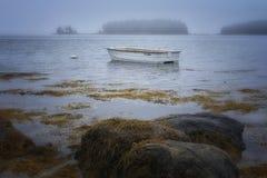Adventure, Beach, Boat Stock Photography