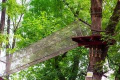 Adventure climbing high wire park Stock Image