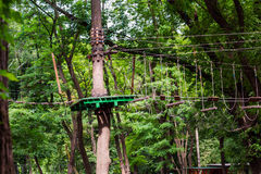 Adventure climbing high wire park Stock Photography